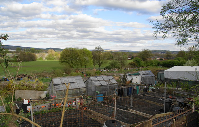 Allotments and the Tame valley