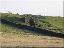 NY5675 : Lime kiln below The Pike (2) by Mike Quinn