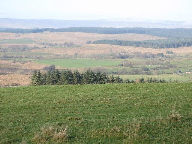 Pasture southeast of Park Head