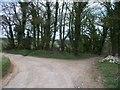 SP1130 : Bridleway meets road by Michael Dibb