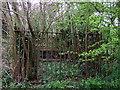 SM9533 : Grave enclosure at Llanstinan by ceridwen