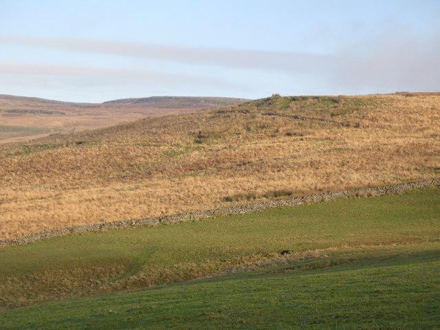 Pastures below Grey Hill