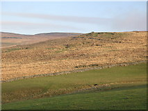 NY5676 : Pastures below Grey Hill by Mike Quinn