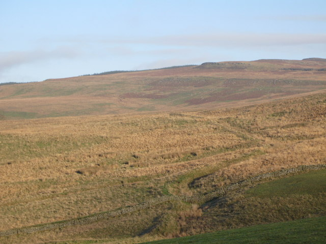 Moorland west of Grey Hill