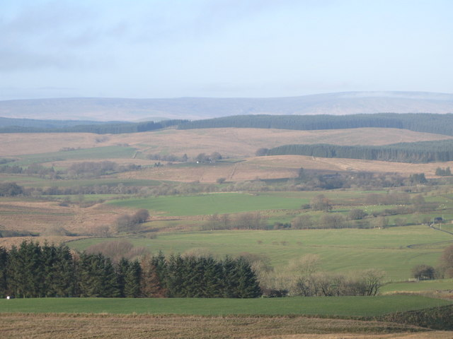 Pastures and plantation east of Park Head