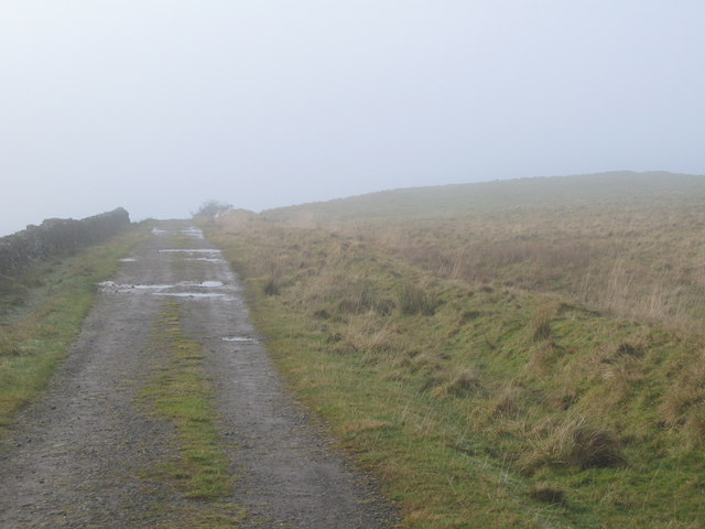 The track to Crossgreens near The Pike