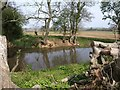 ST2734 : Pond near Rhode by Derek Harper