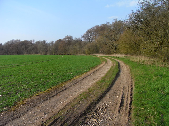 Track and farmland, Highclere