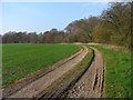 SU4457 : Track and farmland, Highclere by Andrew Smith