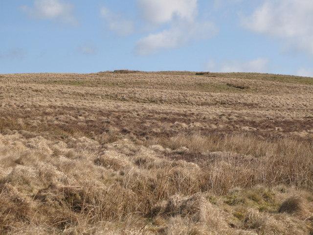 Grey Hill (2)