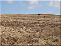 NY5776 : Grey Hill (2) by Mike Quinn
