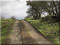 NY6065 : Track to High House Farm by Les Hull