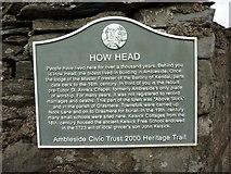 NY3704 : Plaque, How head by Alexander P Kapp