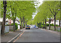 SX4656 : Dingle Road, North Prospect - Plymouth by Mick Lobb