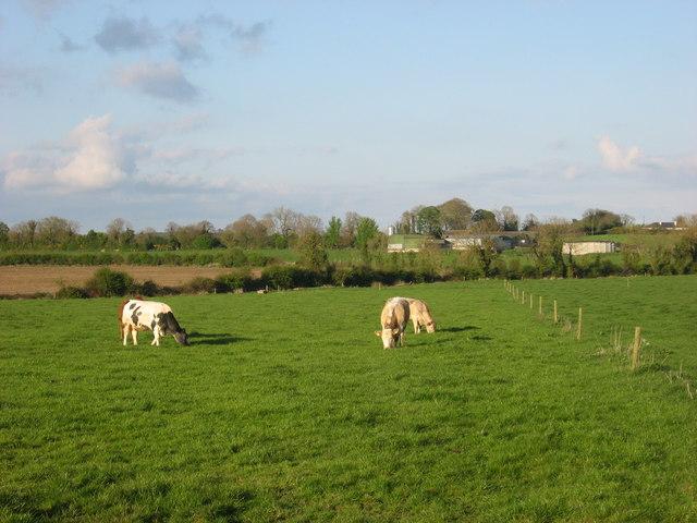 Rowlestown, Co. Meath