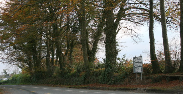 On the R730, County Wexford