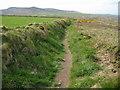 SW4238 : Coast path above Robin's Rocks by Philip Halling