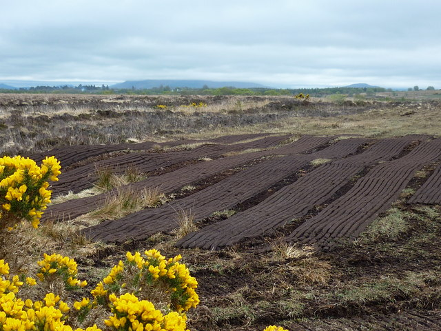 Turf at Garrynagran Bog, County Mayo