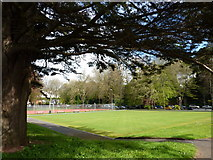 SX9164 : Bowling green, Upton Park, Torquay by Tom Jolliffe