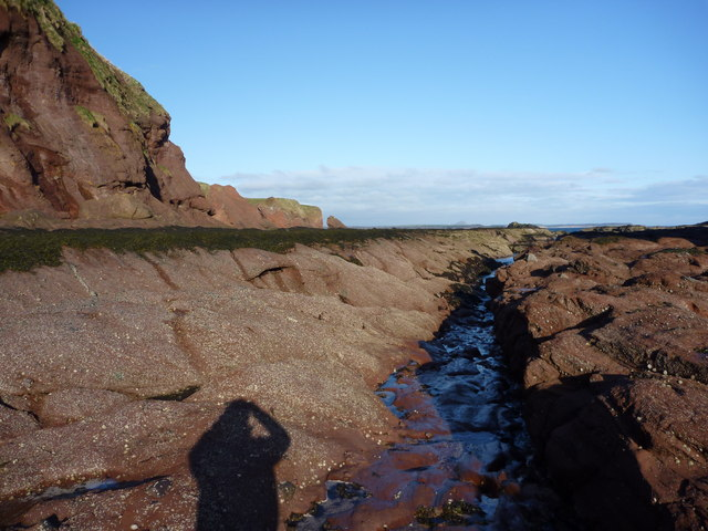 In The Groove : Getting down on the intertidal platform at Dunbar