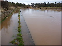 NT6578 : Biel Water in Flood between West Barns and Belhaven by Richard West