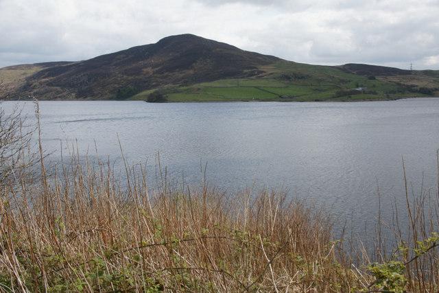 North shore of Llyn Celyn