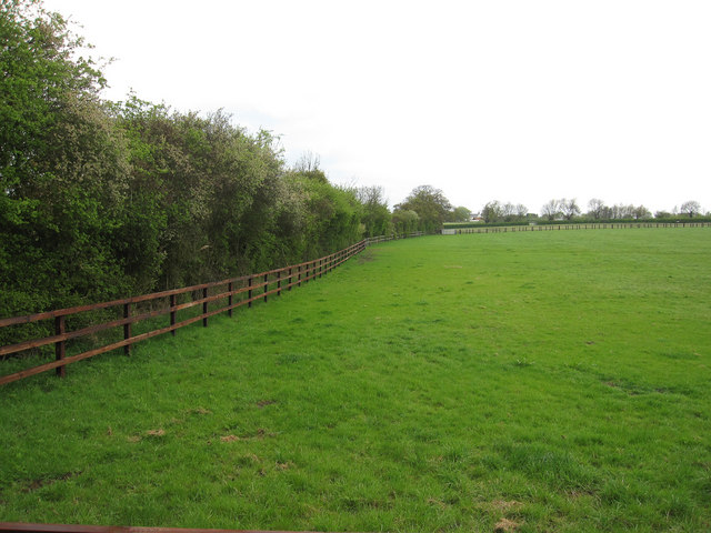Horse Field 169 Hugh Venables Cc By Sa 2 0 Geograph