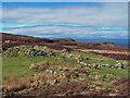 NG2564 : Ruin in Sròn Ocrhulan by Richard Dorrell
