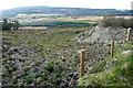 R1775 : Scrubland at Kinturk by Graham Horn