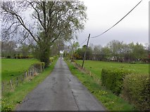 H4967 : Tullyrush Road, Ranelly by Kenneth  Allen