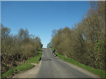 NR8261 : Cyclists on the B8001 by Andrew Abbott