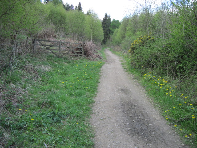 Footpath towards Hassop
