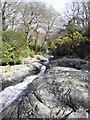J3629 : The Glen River near Newcastle by HENRY CLARK