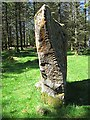 S9894 : Ogham Stone by kevin higgins