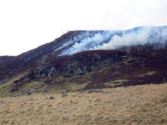 Heather burning, Glen Quaich