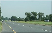 N8317 : The R445 road, County Kildare (2) by Sarah777