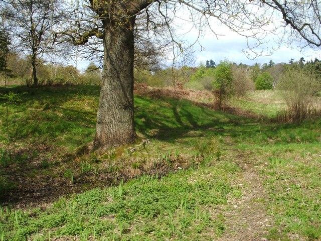The original Balloch Castle - eastern side