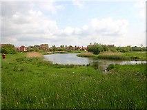SP2663 : Chase Meadows Lake, Warwick by David P Howard