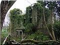 SM9532 : Ruins of Llanstinan House by ceridwen