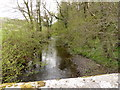 SS6502 : The view upstream from Yeo Bridge on the river Taw by Roger A Smith