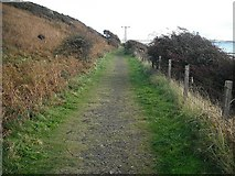 NO4202 : East of Fife Railway by Richard Webb
