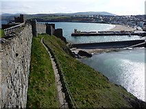 SC2484 : Peel Bay from the castle by Chris Gunns