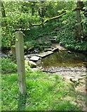 SK3463 : Stepping stones across the River Amber by Nikki Mahadevan