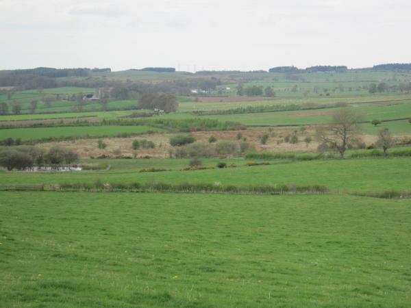 Farmland and Pond near Shildon