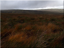 NY6640 : Above the Maiden Way by Colin Bruce