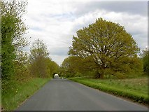 TL1116 : The Common Harpenden by Steve  Fareham