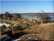 NT6378 : Arrowhead at Hedderwick, East Lothian by Richard West