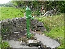 N9458 : Water pump, Co Meath by C O'Flanagan