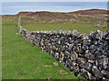 NG2365 : Unish township boundary wall by Richard Dorrell
