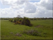N9452 : Landscape, Co Meath by C O'Flanagan